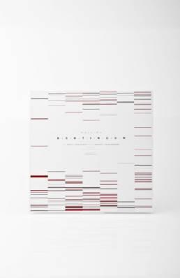 Projekt Kontinuum, Plattencover DNA, einzelne Grafische Elemente
