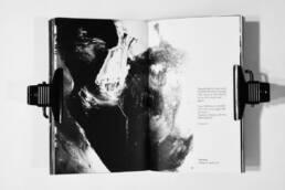 Buchgestaltung, Fotografie, Werbetexte, Projekt Social Adaption Chicago, Layout Bild 12