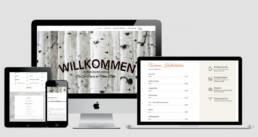 Projekt Maien Hütte Arena Nürnberger Versicherung, Webdesign Würzburg